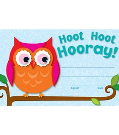 The popular Owl design creates a cheerful and inspirational award that students will be proud to receive.  Students will love the encouraging message!. Available in packs of 30. Great to have on hand to celebrate students accomplishments and achievements. Look for coordinating products in the Colorful Owl design to create an exciting classroom theme! Each sheet measures 5 ½ x 8 ½.