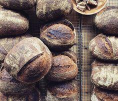 bakery47 | bread barter