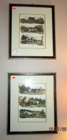 Pair of Brodtman/Schinz Prints circa 1824