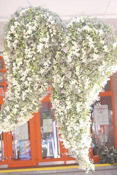 ✿ Flower Arrangements, Victoria, House Styles, Flowers, Home Decor, Floral Arrangements, Decoration Home, Room Decor, Royal Icing Flowers