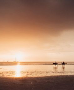 Horseback riding on the beach in Costa Rica at sunset. sunset, sunsets, beach sunset, sunset ocean, sunset photography, sunset pictures, sunset sky, sunset beautiful, sunset background, Cielo atardecer, sunset sea, sunset pastel, sunset beach surf, sunset