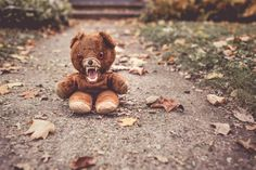 Scary yet cuddly teddy Copyright 2017 YadNote Funny Blogs, Horror, Monday Inspiration, We Need, Blank Cards, High Quality Images, Free Photos, Scary, Psychology