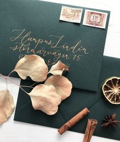 Dark green envelopes for bohemian autumn, fall or winter wedding invitations with bronze address calligraphy lettering Calligraphy Envelope, Modern Calligraphy, Autumn Fall, Winter, Envelopes, Boho Wedding, Wedding Invitations, Bohemian, Place Card Holders