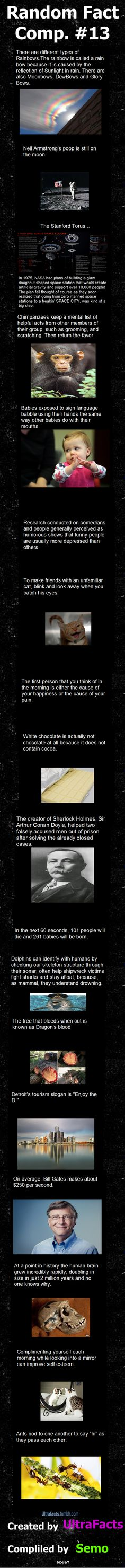 Random Fact Comp 13  // funny pictures - funny photos - funny images - funny pics - funny quotes - #lol #humor #funnypictures
