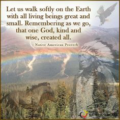 Walk softly, my friend!  Partnership With Native Americans / Remember Native Americans - Google+