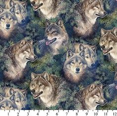 "1/2 Yard - ""Wolves & Evergreen""s Timber Wolf Mates 100% Cotton Fabric - Designed by Larry Fanning (Great for Quilting, Sewing, Craft Projects, Throw Pillows & More) 1/2 Yard X 44 Larry Fanning Wolf Fabric http://smile.amazon.com/dp/B00LCHVA8G/ref=cm_sw_r_pi_dp_PSaHwb0MD352W"