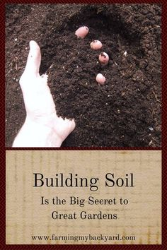 There's one thing that can make a world of difference in your gardening success, the quality of your soil. Building soil will make you a better gardener.: