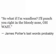 The heartbreakingly funny thought that James used his last moments to mock Voldemort's lack of nose.