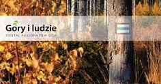 Portal dla ludzi gór, pragnących dzielić się doświadczeniem z dużą, internetową społecznością. Dołącz do nas już dziś!