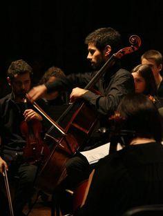 Ricardo Januário, violoncelo