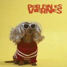 Por fin es #Viernes!! #Docsity #weekend #humor