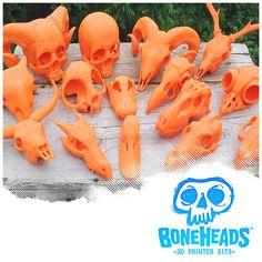 BONEHEADS Series 1: Master Set