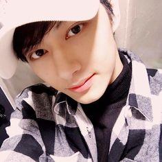 Jun Seventeen Wen Junhui