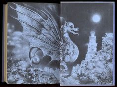 Illustrated endpapers of Le vol du dragon