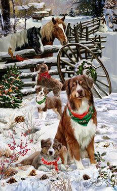 """New for 2014! Australian Shepherd Christmas Holiday Cards are 8 1/2"""" x 5 1/2"""" and come in packages of 12 cards. One design per package. All designs include envelopes, your personal message, and choice of greeting.Select the inside greeting of your choice from the menu below.Add your custom personal message to the Comments box during checkout."""