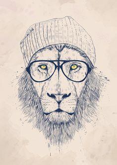 Cool lion Art Print | Balázs Solti