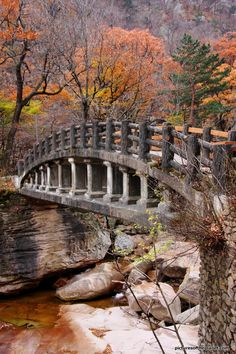 Bridge in the beautiful Seoraksan National Park in South Korea. Rocks look really familiar. Parque Nacional Seoraksan, Seoraksan National Park, Autumn In Korea, Pont Paris, Nature Photography, Travel Photography, South Korea Photography, Old Bridges, National Parks