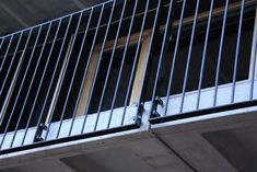 Gallery of In Progress: Housing 912 / H Arquitectes - 23