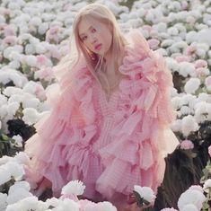 Kpop Girl Groups, Kpop Girls, Foto Rose, Rose And Rosie, Rose Queen, Rose Icon, Rose Park, Black Pink Kpop, Blackpink Photos