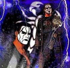 Sting TNA World Heavyweight Champion Wcw, Sting Wcw, Wrestling Wwe, Big Guys, Sports, Superhero, Wwf, The Man, Bad Guy