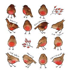 Buy Paperhouse Robins Charity Christmas Cards, Box of 6 online at John Lewis