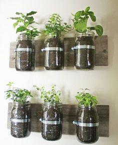 Mason Jar Wall Planter [SOURCE]