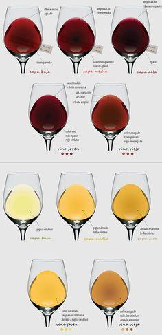 Cómo reconocer un buen vino por su color