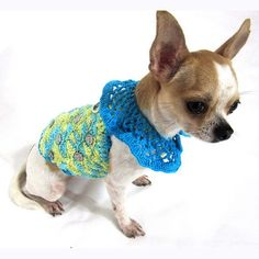 Mother's day gift ideas. #chihuahua #dogclothes #myknitt
