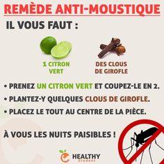 Quelle galère de dormir quand il y a des moustiques ! Alors voici un petit remède naturel qui peut peut-être vous aider à les faire fuir. ➡️ Pour me suivre : Valentin Loiseau, Facebook