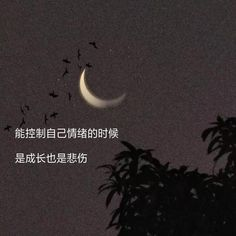 Pin by 我無所謂ㄚ on 語錄 in 2020   Chinese quotes, Chinese phrases, Life quotes