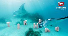 Tikehau, the manta's Eden http://www.topdive.com/