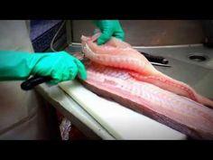 Fileteado de pescado - YouTube