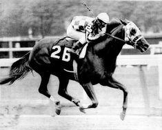 Secretariat Vintage Horse Racing #12 Photograph by Retro Images Archive