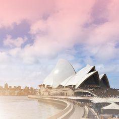 Hello Sydney #sydney #australia #holiday #vacation #travel #wanderlust #downunder #opera #citylife #sydneyoperahouse #nsw #pinterest #pinmajeigh
