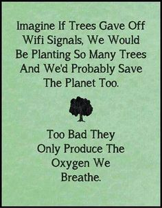 TOP IRONY quotes and sayings : Imagine if trees gave off wifi signals, we would be planting so many trees and we'd probably save the planet too. Too bad they only produce the oxygen we breathe. Great Quotes, Quotes To Live By, Me Quotes, Funny Quotes, Inspirational Quotes, Funny Memes, Daily Quotes, Wisdom Quotes, Humour Quotes