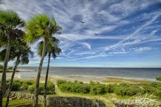 The Northernmost point on Pine Island, Hernando County, Florida