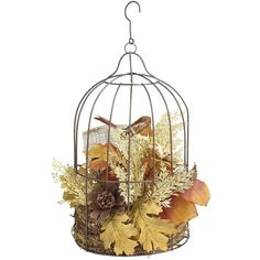 Pier 1 Imports Birdcage Arrangement ($7.48) ❤ liked on Polyvore featuring home, home decor, fillers, birds, pier 1 imports, outside home decor, pine cone home decor, colorful home decor and bird home decor