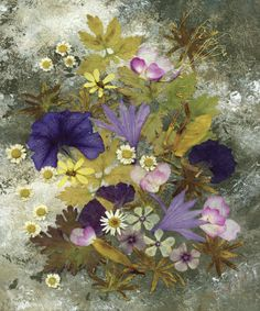 Morning Glory - Pressed Flower Art - Floral Arrangement  Artist: Shelley Xie