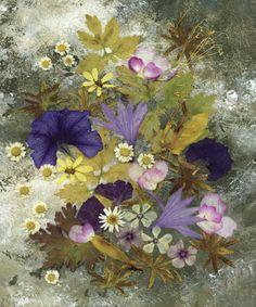 Morning Glory - Pressed Flower Art - Floral Arrangement  Artist: Shelley Xie
