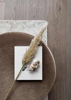 dinner set-up · nude · brown · beige · natural · gray · wood Mood Images, Photo Images, Moodboard Interior, Flat Lay Photography, Minimalist Photography, Beige Aesthetic, Home Interior, Brown Interior, Brown Beige