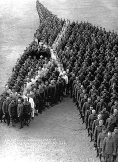 Soldiers pay moving tribute to 8 million horses, donkeys, and mules who died during the First World War.  Source: sixpenceee