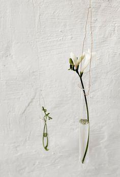 Daniella Witte: HANGING VASES #plants #indoorsgarden