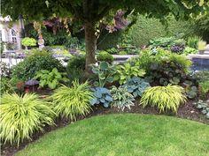 Transformando um jardim com bons ossos - Great Landscaping and Gardening Ideas - Shade Landscaping, Outdoor Landscaping, Front Yard Landscaping, Outdoor Gardens, Landscaping Ideas, Landscaping With Grasses, Landscaping Around Trees, Hydrangea Landscaping, Landscaping Edging