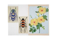Kintaro Ishikawa, Roses with Lovely Insects on ArtStack #kintaro-ishikawa #art