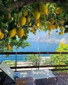 Enjoying the view of the Amalfi Coast from the lemon pergola at the Casa Angelina Hotel in Praiano, Italy 🇮🇹 📷… Beautiful Places To Travel, Beautiful World, Romantic Travel, Amazing Places, Wonderful Places, Travel Aesthetic, Aesthetic Korea, Travel And Leisure, Amalfi Coast