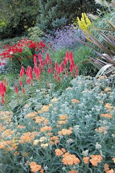 Perennial flowers at heronswood garden gardens pinterest perennial flowers at the garden of st erth mightylinksfo