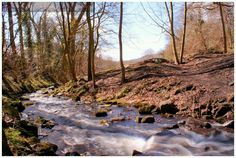 'Lumsdale Valley' in The Peak District.