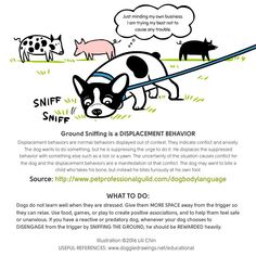 Dog body language - ground sniffing as a displacement behavior.