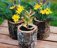 Add color and style to your garden without distracting from its innate beauty using these natural wood log planters. Each planter is made from all natural sustainably sourced wood and features a six inch diameter hole ideal for small plants and flowers. Diy Wood Planter Box, Log Planter, Wooden Planters, Planter Boxes, Diy Garden, Garden Projects, Log Projects, Summer Garden, Outdoor Projects