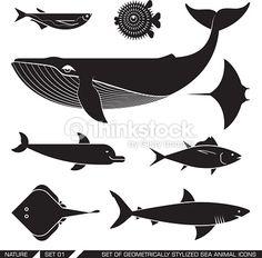 Risultati immagini per sagoma razza mare